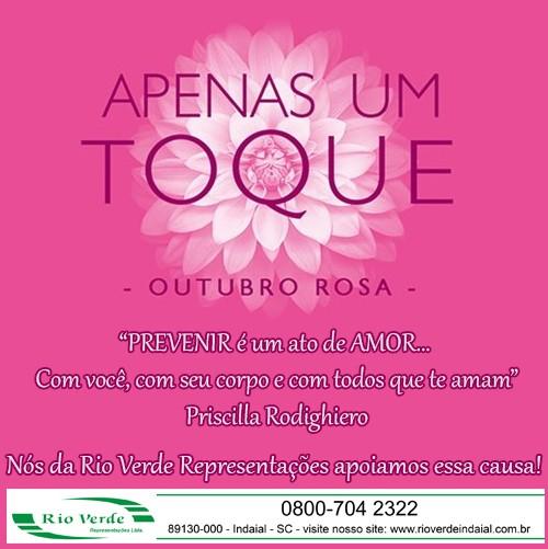Outubro Rosa...nós apoiamos essa causa!